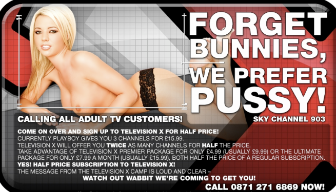 playboy-offer-from-television-x